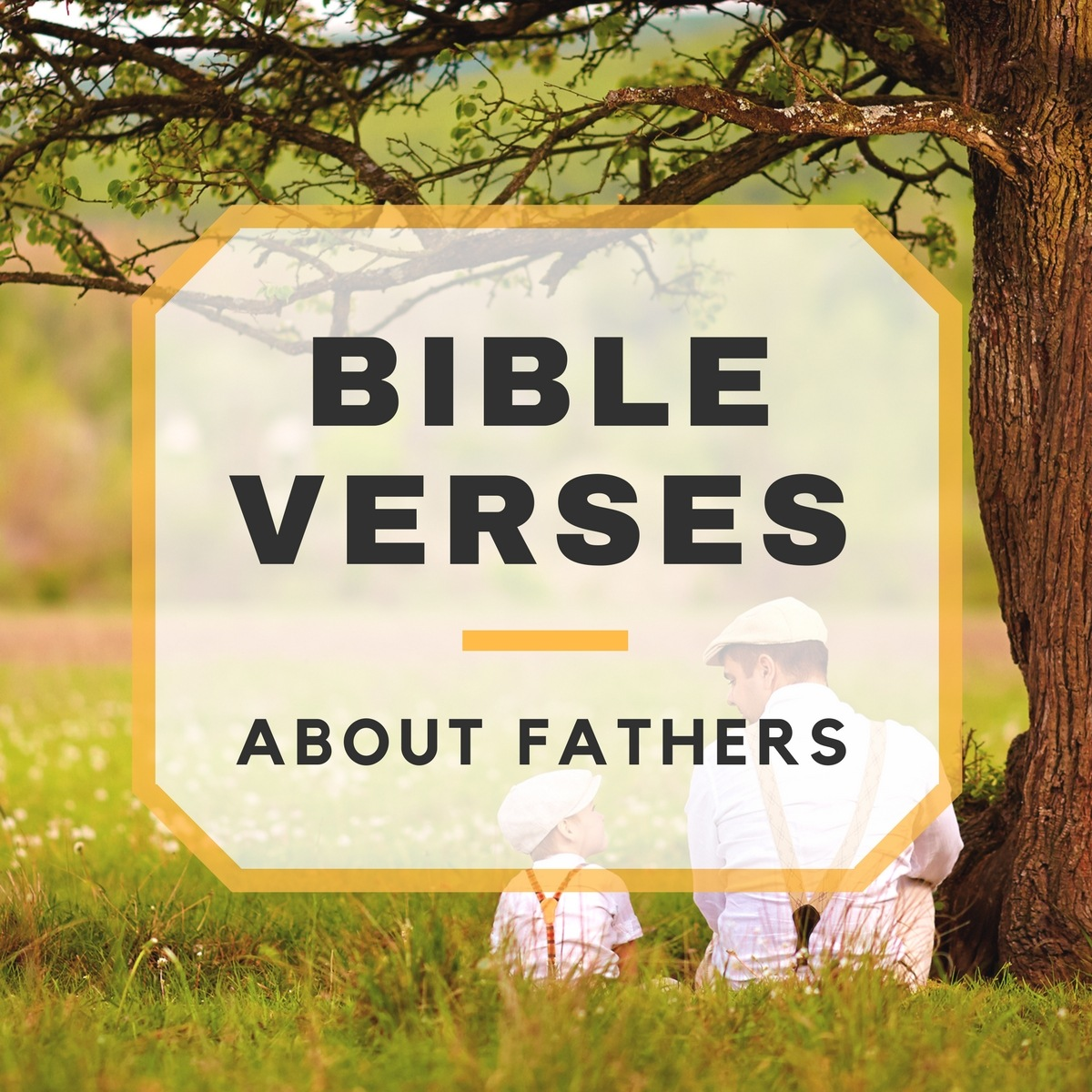 Bible Verses About Fathers