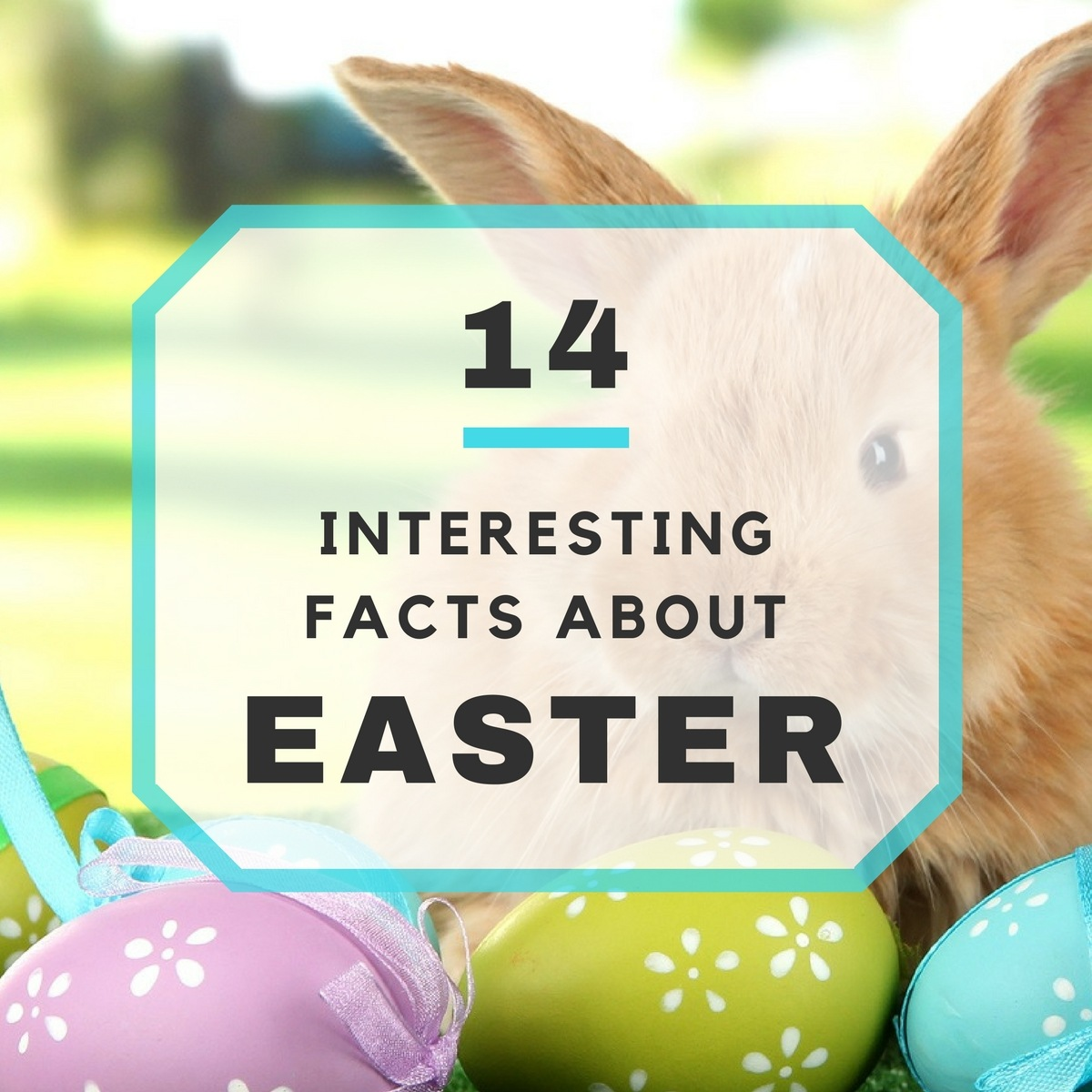 14 Interesting Easter Questions Answered