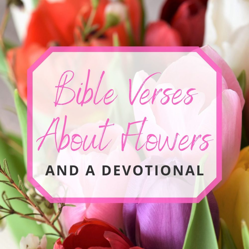 10 Bible Verses About Flowers and a Devotional